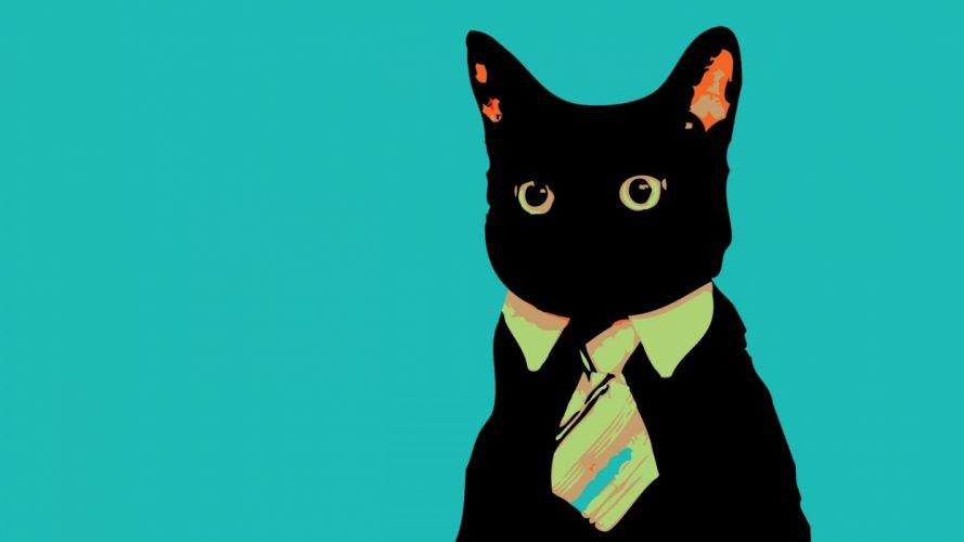cat 1920x1080 wallpaper