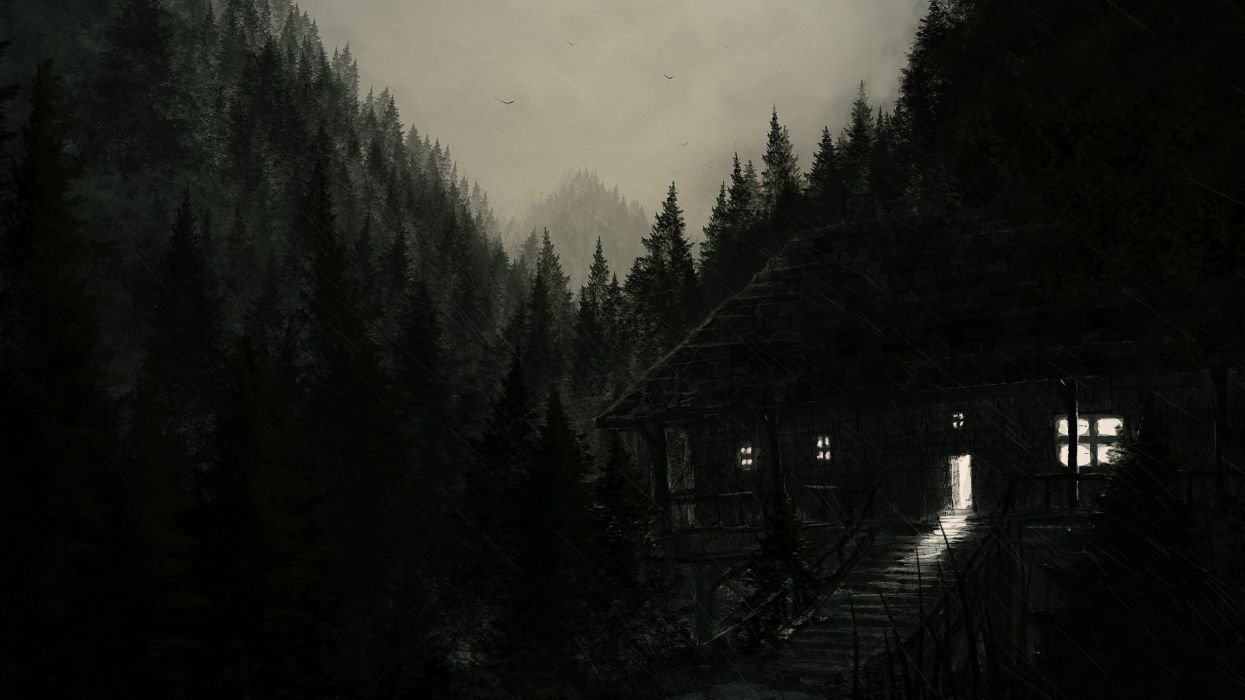 dark abstracto bosque noche wallpaper