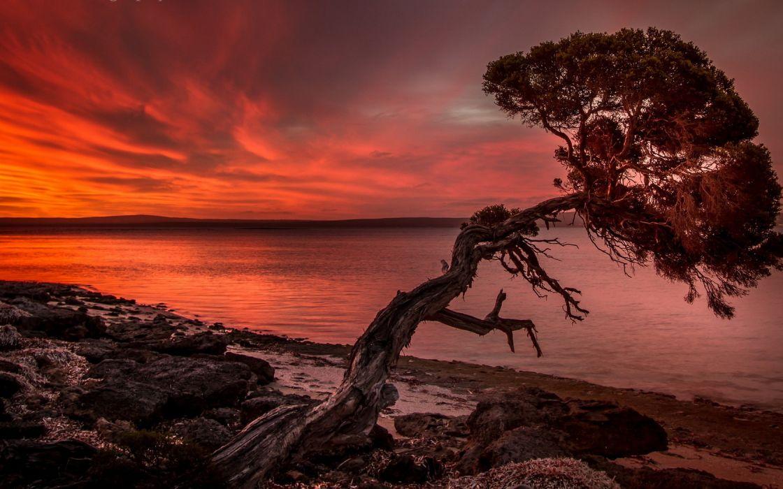 Crimson sunset on the shore wallpaper