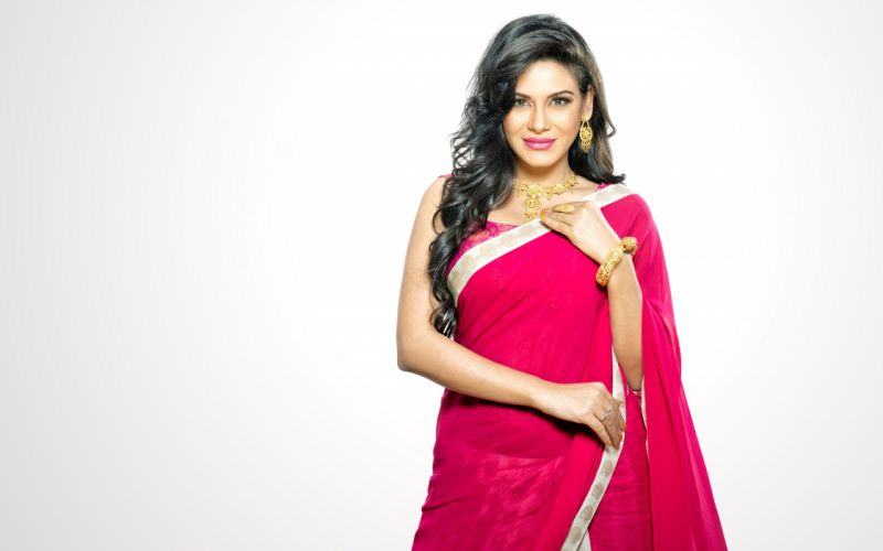 bollywood actress saree sari celebrity model girl beautiful brunette pretty cute beauty sexy hot pose face eyes hair lips smile figure makeup indian wallpaper