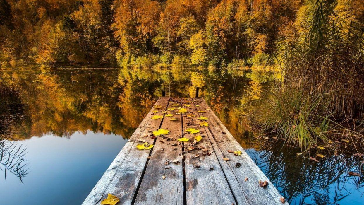 -lake-cool-forest-excelent-nature-landscapes-fun wallpaper