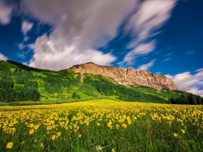 Flowers Colorado mountains Colorado You meadow clouds to Crested Butte Mountain Resort wallpaper