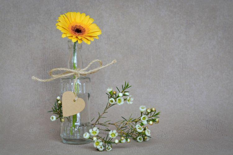 gerbera flower blossom bloom yellow yellow flower schnittblume frangipani heart pendant vase deco still life close wallpaper