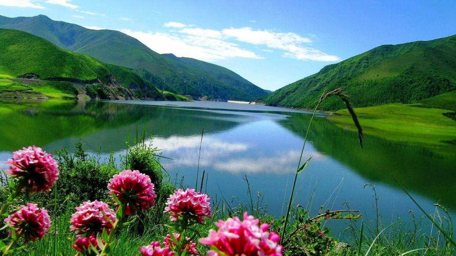 lake-greenery-green-calm-crystal-mirrored-grass-clouds-mountain-shore-reflection-serenity-sky-clear-quiet-summer-nature-flowers-lakes wallpaper