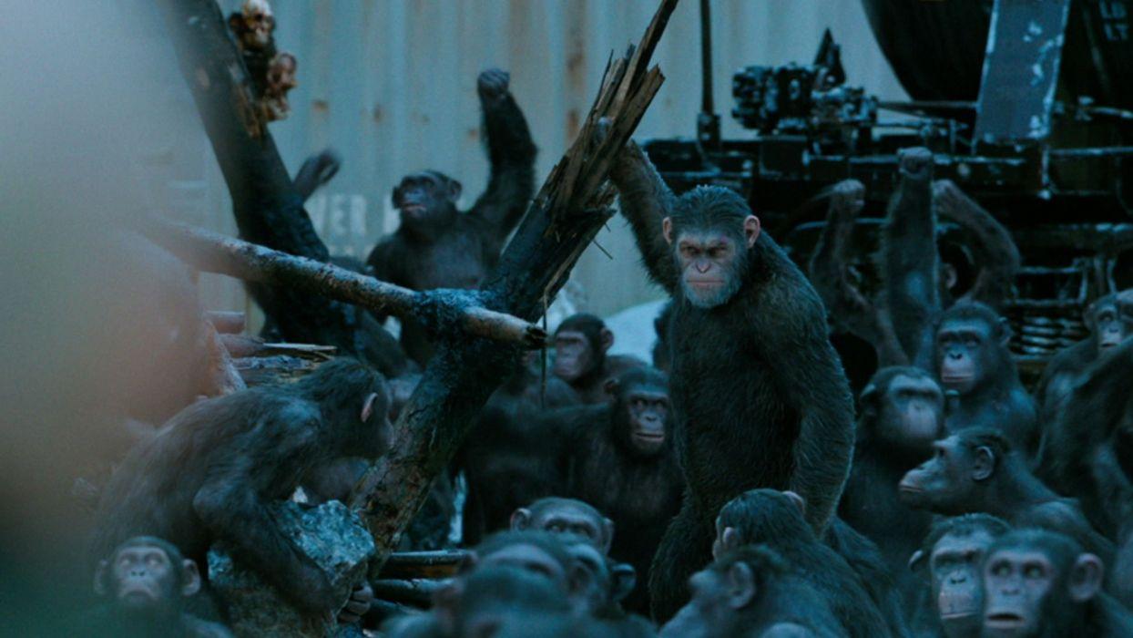 el planeta los simios la guerra pelicula ciencia ficcion aventuras wallpaper