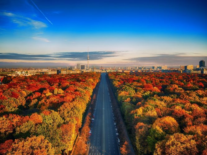 Road among autumn trees Berlin wallpaper