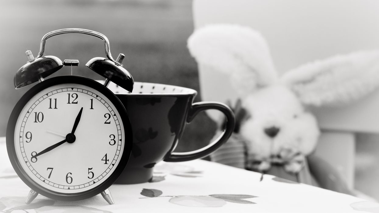 alarm alarm clock black-and-white bunny clock cup hours indoors minutes number numbers quartz seconds still life stuffed toy table time wallpaper