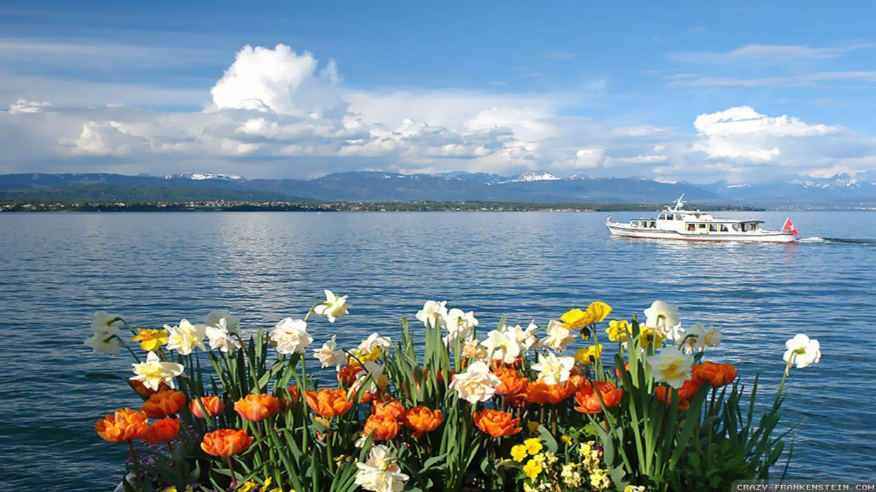 spring-lake- wallpaper