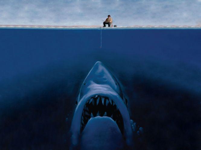 Sharks Humor wallpaper