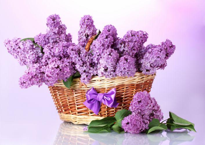 Lilac Violet Wicker wallpaper
