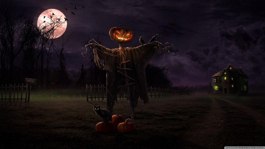 noche halloween espantapajaros calabaza wallpaper