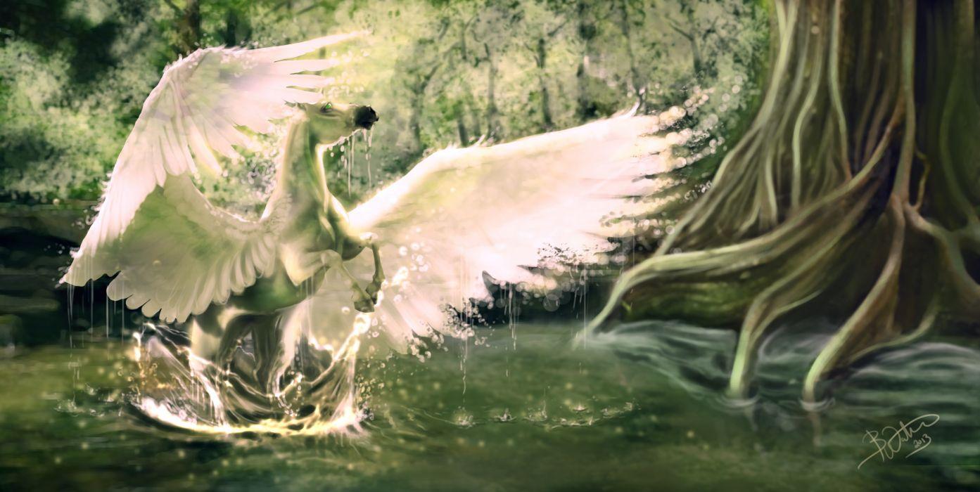Pegasus Horses Wings Fantasy wallpaper