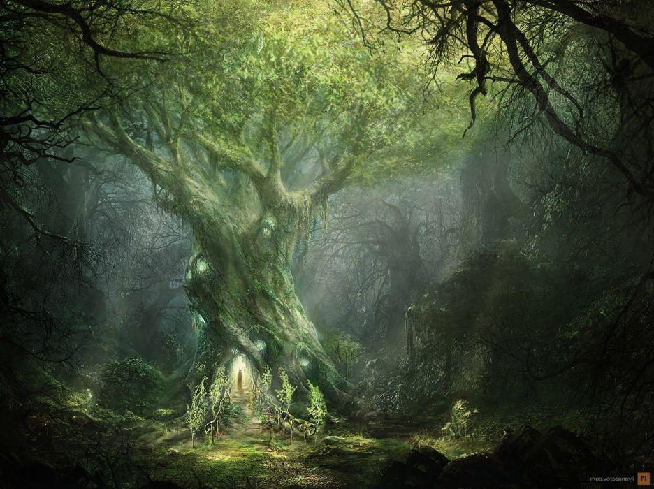 Fantasy Art forest tree door magis wallpaper | 1600x1197 | 1094493 |  WallpaperUP