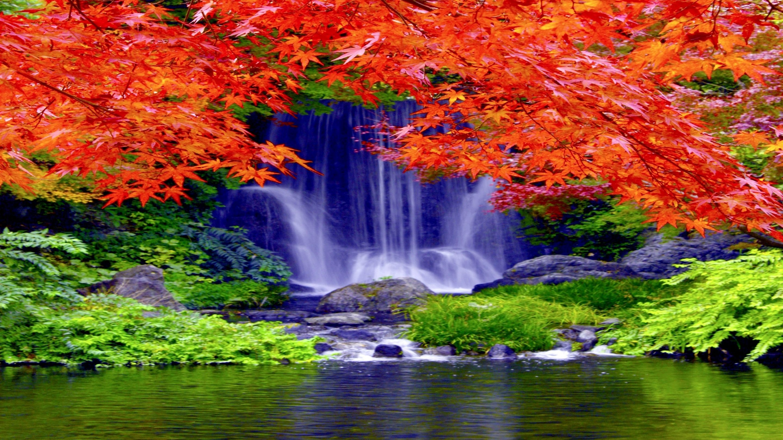 Waterfall forest falls nature waterfalls autumn wallpaper - Waterfalls desktop wallpaper forest falls ...