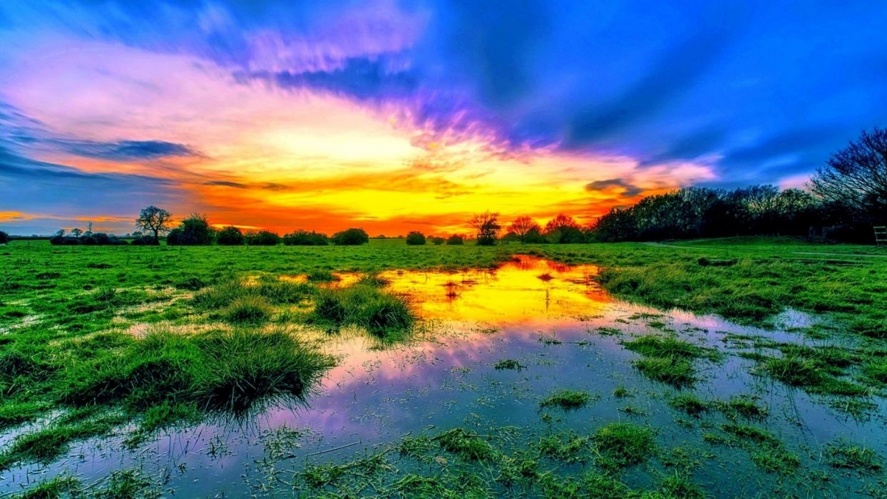 Water-swamp-Sunset-clouds-wood wallpaper