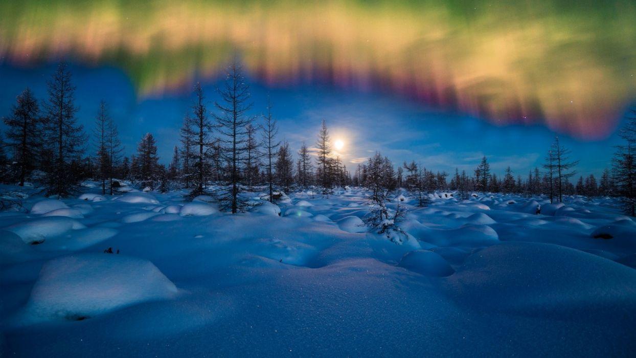 winter aurora borealis wallpaper