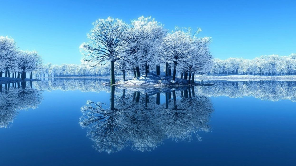 winter-frosty-branches-trees-day-clear-river-sky-cold-mirrored-calm-frost-reflecting-water-lake-quiet-reflection-serenity-ice-nature- wallpaper