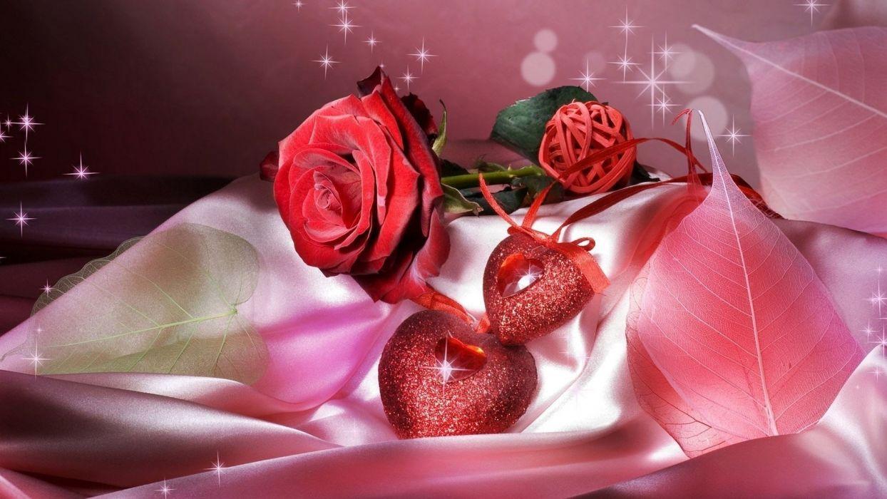 dia san valentin rosas rojas amor wallpaper