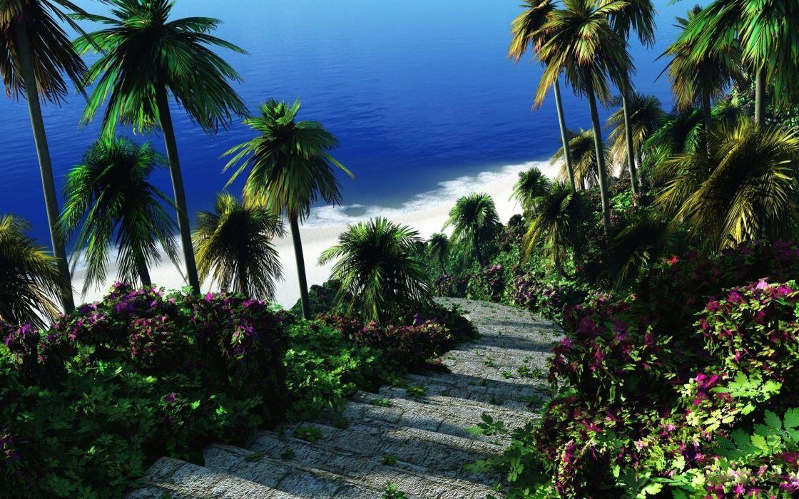 Greens Palm Steps Tropics Sea Stairs wallpaper