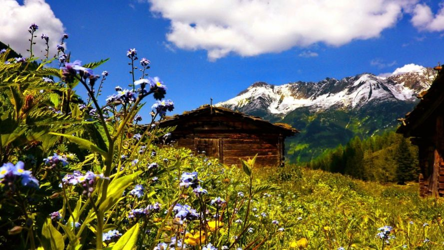 mountain-summer-flowers-peaks-cottage-alps-cabin-hut-wooden-peaceful-wildflowers-lovely-nature-austria-hoyse-sky-field-beautiful-lonely-slope-clouds-hills wallpaper