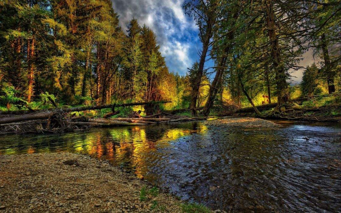 nature-autumn forest river landscape cool trees wallpaper