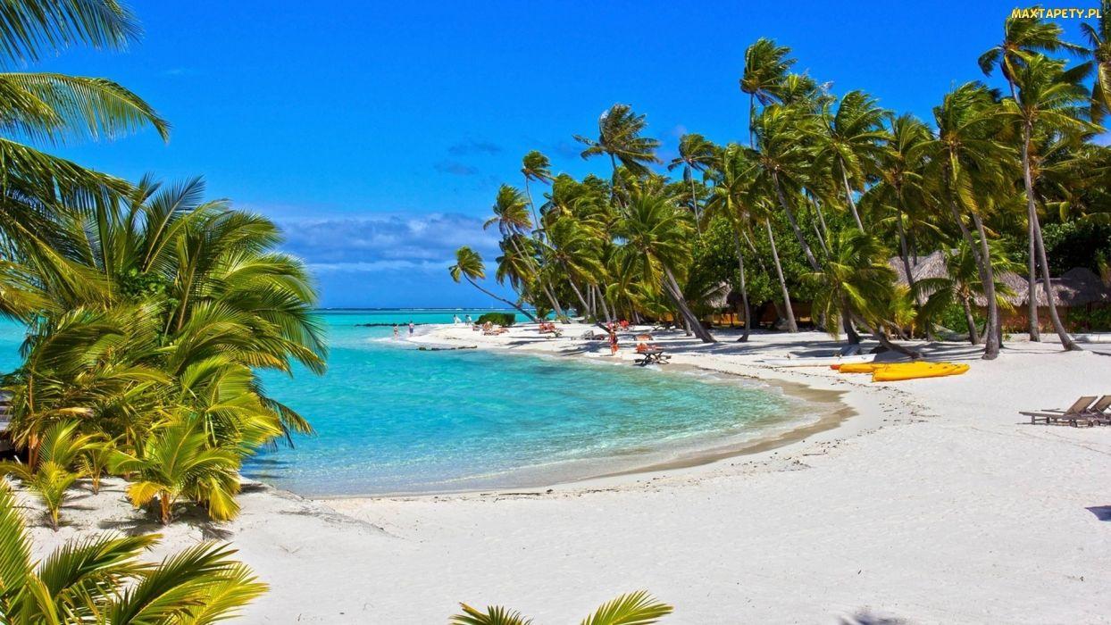 playa blanca palmeras mar naturaleza wallpaper