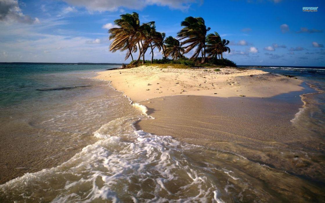 isla playa palmeras mar naturaleza wallpaper