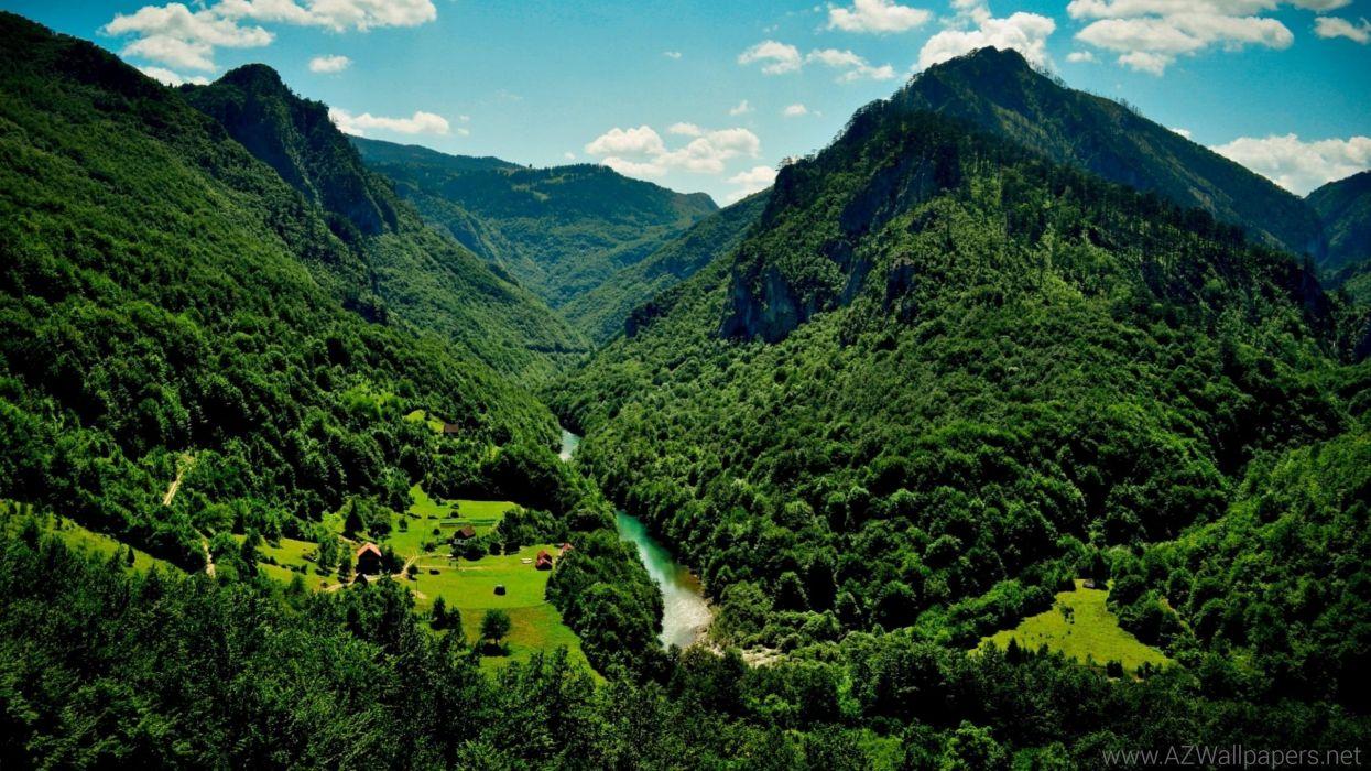 paisaje naturaleza bosque rio montes wallpaper