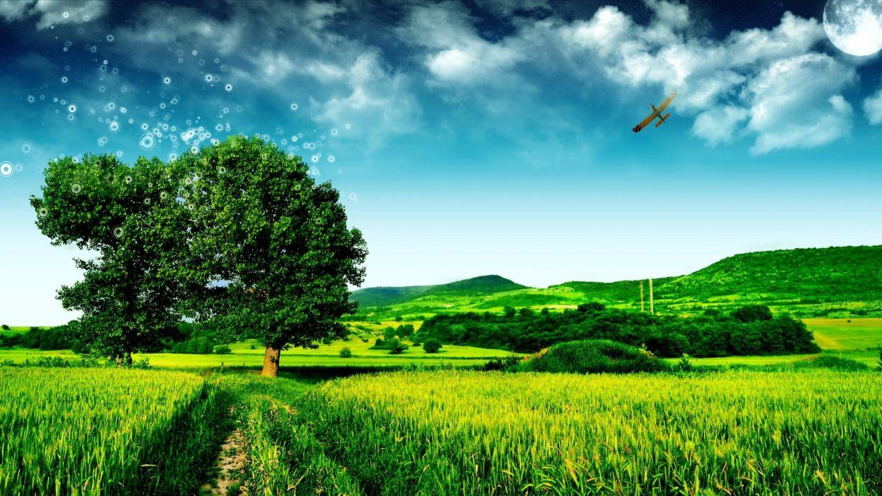 paisaje naturaleza pradera arboles wallpaper