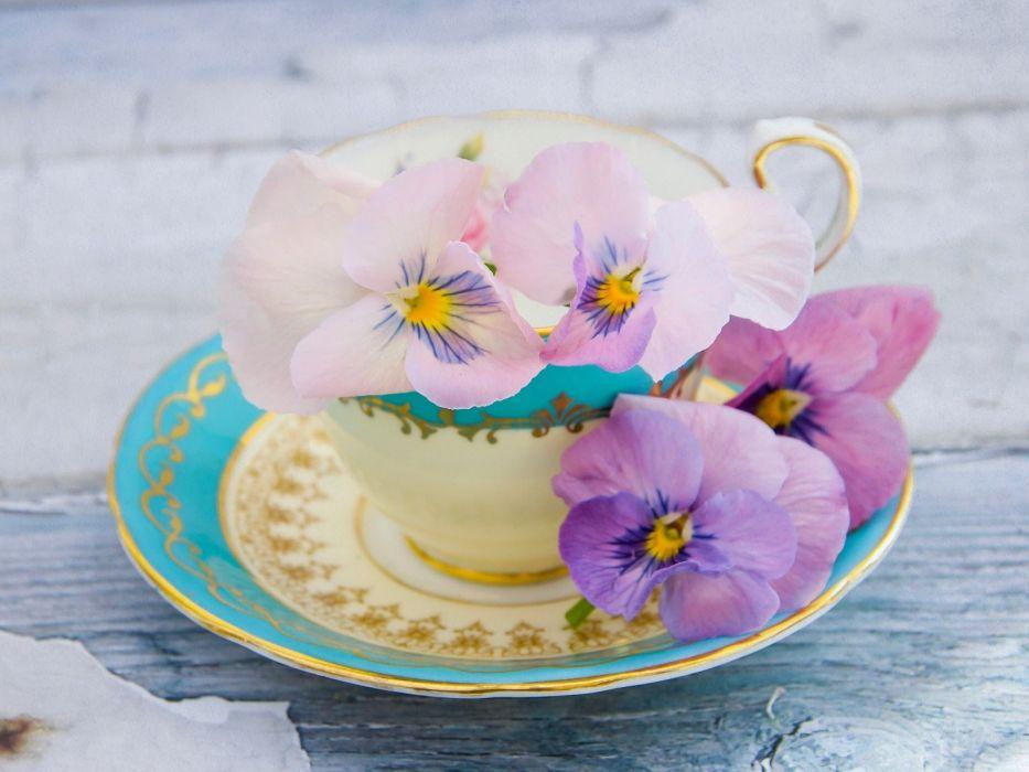 cup saucer Pansy Viola wallpaper