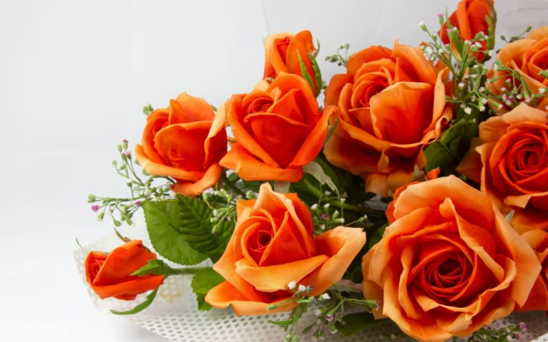 flowers rose color flowers rose bouquet orange wallpaper