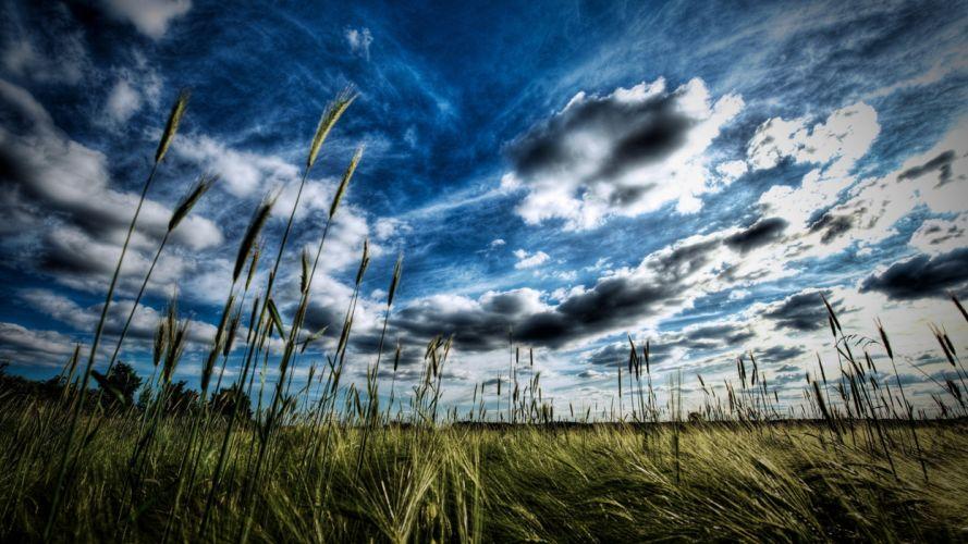 campo cielo naturaleza nubes wallpaper