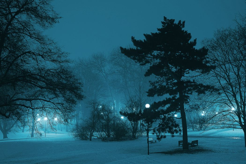 atmosphere branch cold dark dawn fog foggy frost frozen ice lamp landscape light mist nature night outdoors park pond scenic season silhouette snow trees weather winter wallpaper