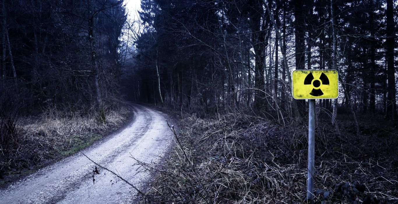 danger daylight dry environment fall forest grass guidance landscape light nature outdoors park path pathway road road sign season sign street trees weather woods wallpaper