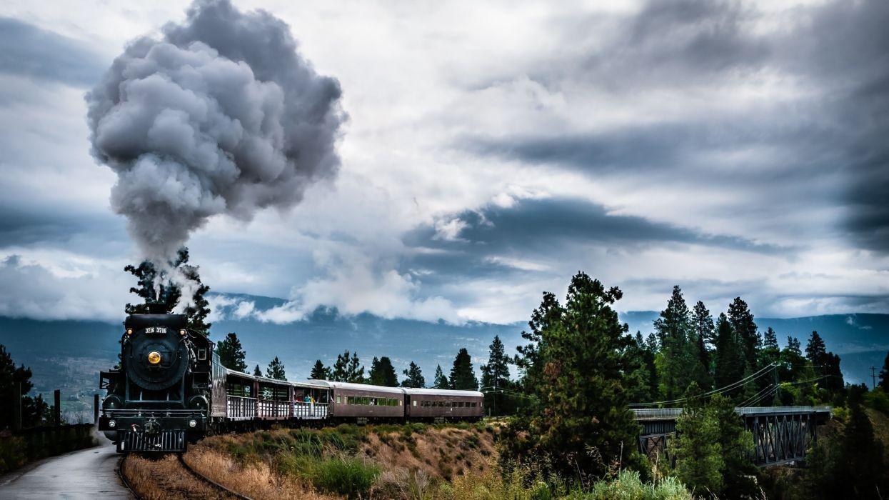 tren vapor puente arboles wallpaper