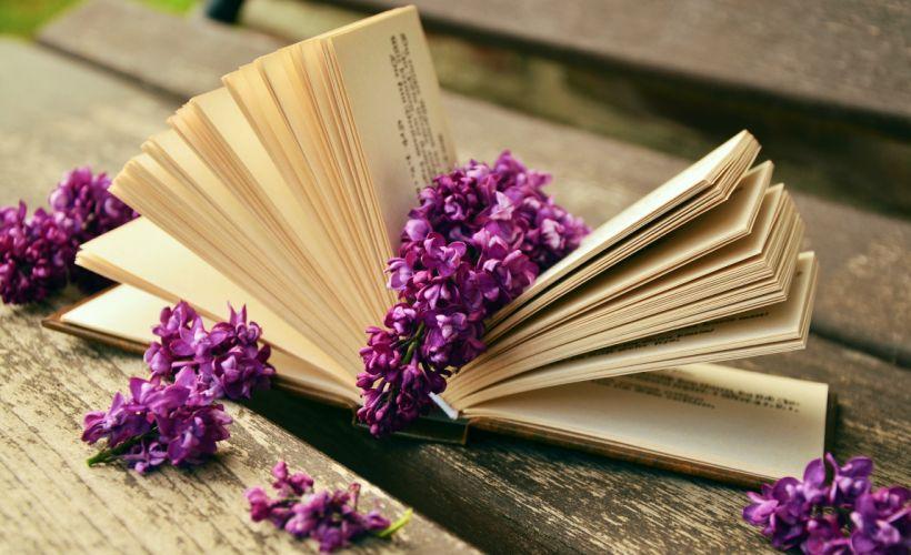 bloom blossom book flora flowers lilacs paper read wallpaper