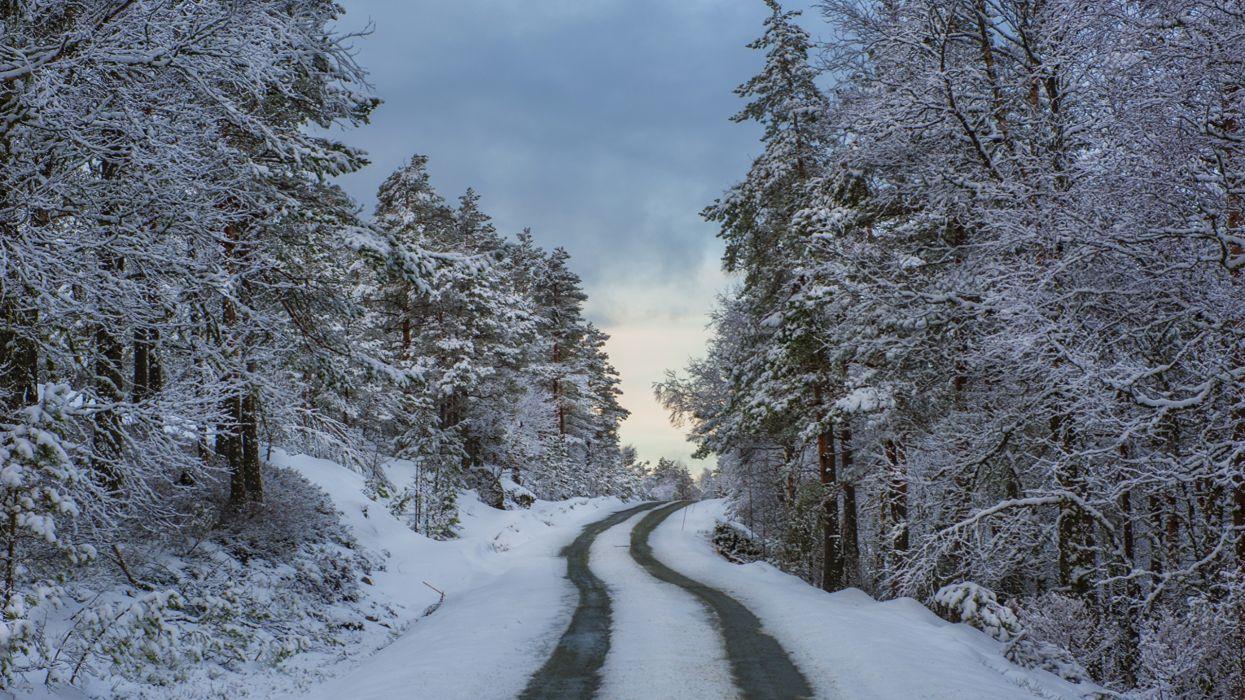 carretera noruega nieve bosque wallpaper