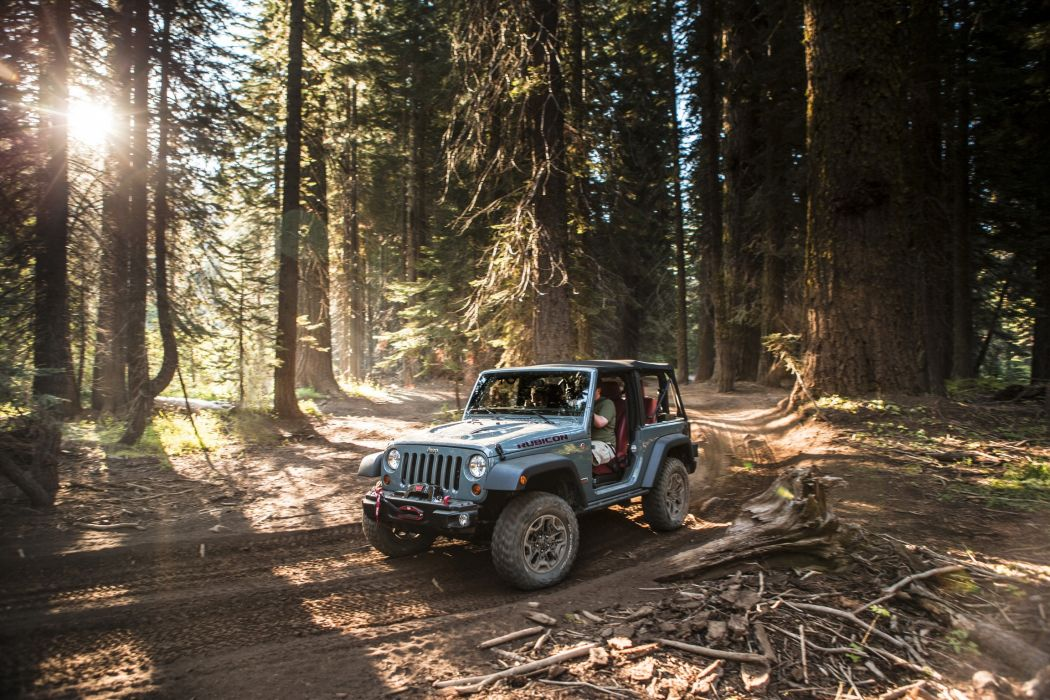 Jeep Forests Wrangler Rubicon 10th Anniversary Trees Cars Nature wallpaper