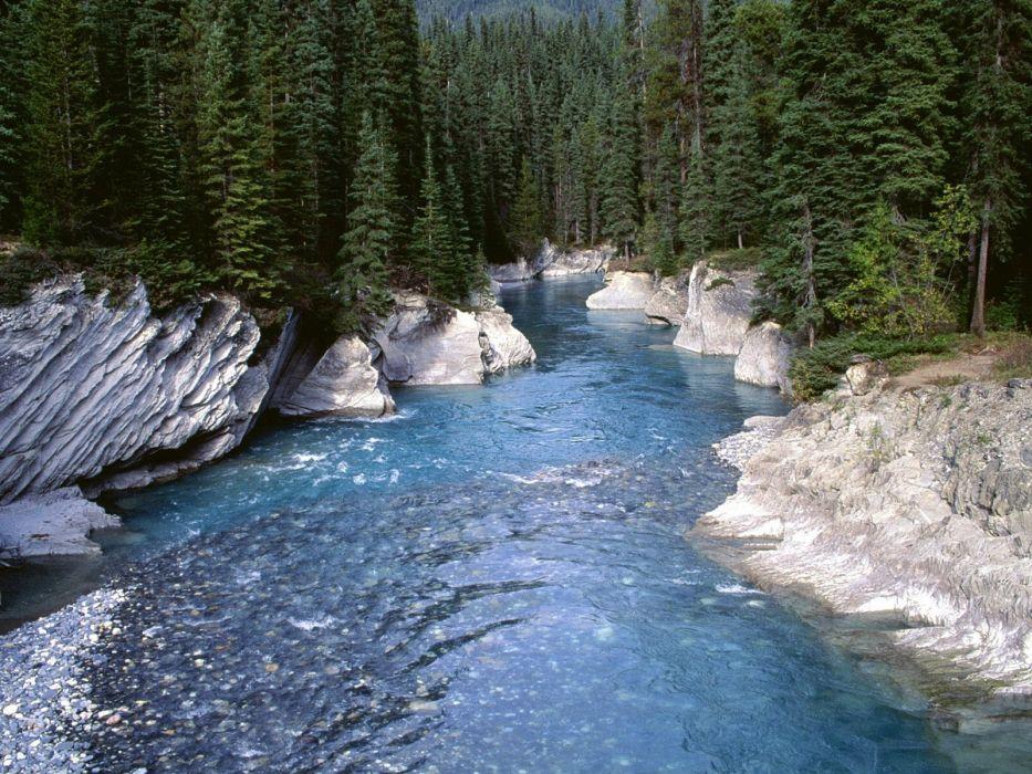 rio invierno hielo bosque naturaleza wallpaper