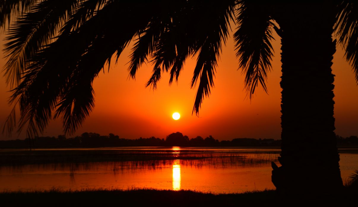 backlit calm clear sky dawn dusk golden hour idyllic nature palm trees peaceful quiet reflection river scenic silhouette sky sunrise sunset tranquil water wallpaper