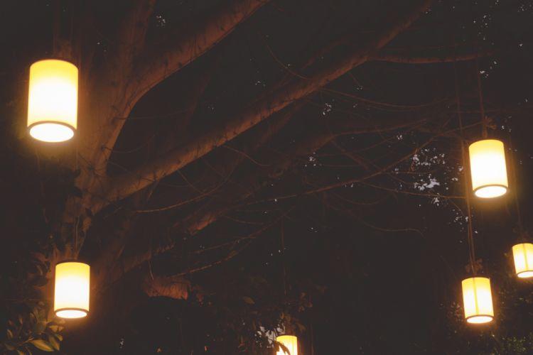 blur bright bulb dark electricity evening illuminated lantern lighted lights luminescence night trees original picture mehmet wallpaper
