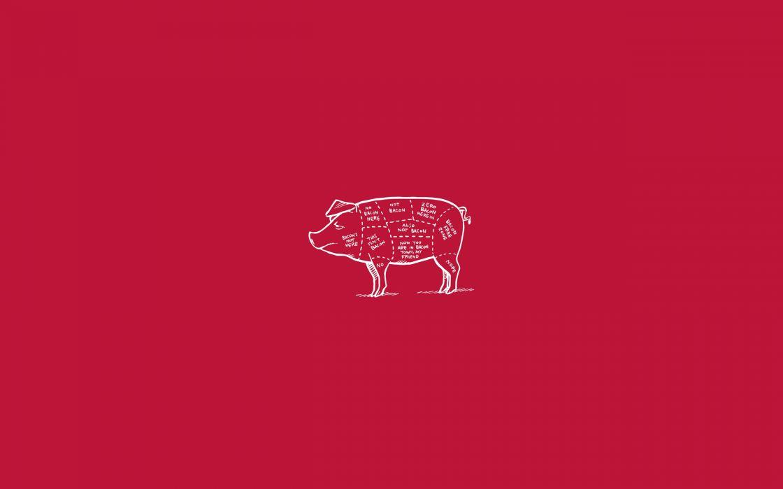 Bacon Not Wallpaper