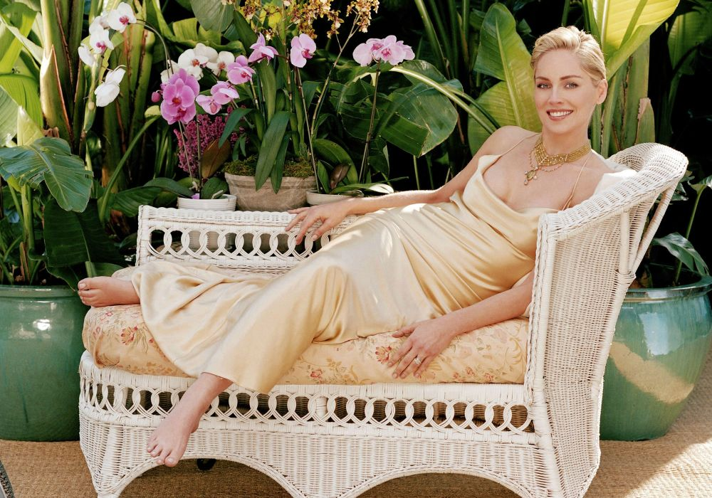 sharon stone actriz americana celebridad wallpaper