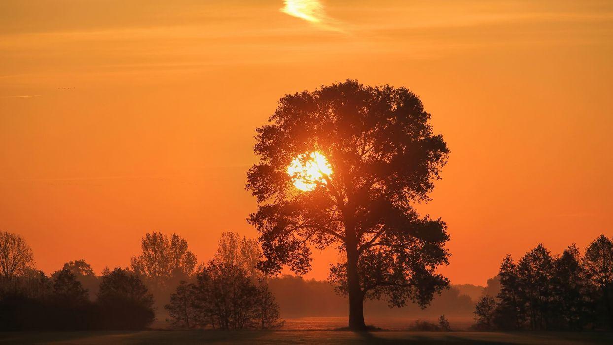 sunset sunrise nature color sky horizon wallpaper