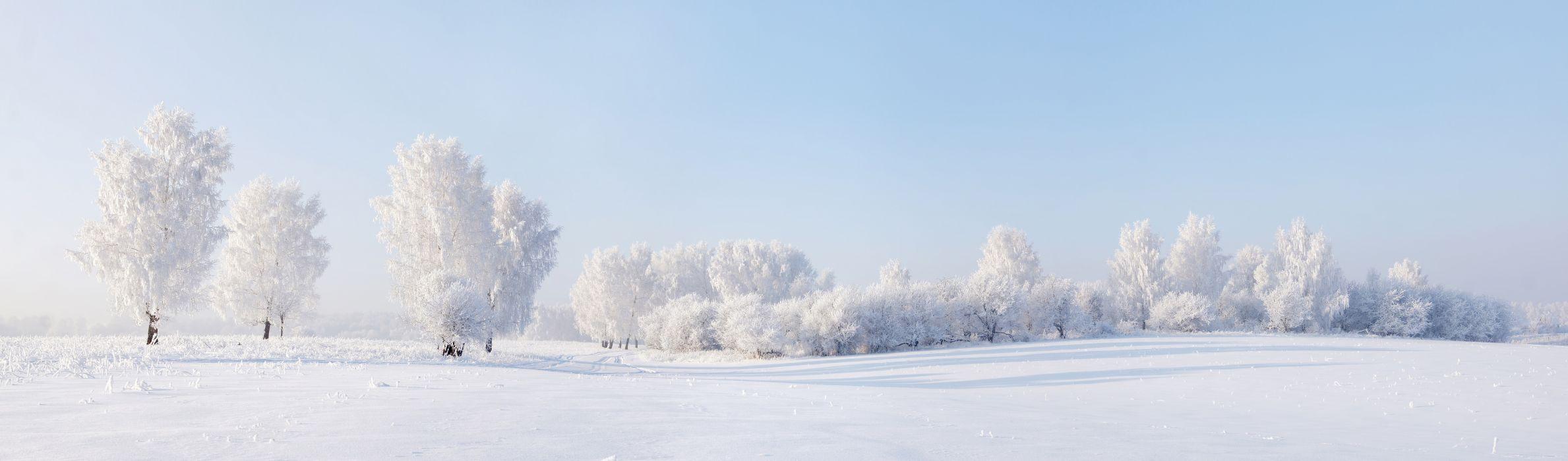 nature winter landscape snow wallpaper