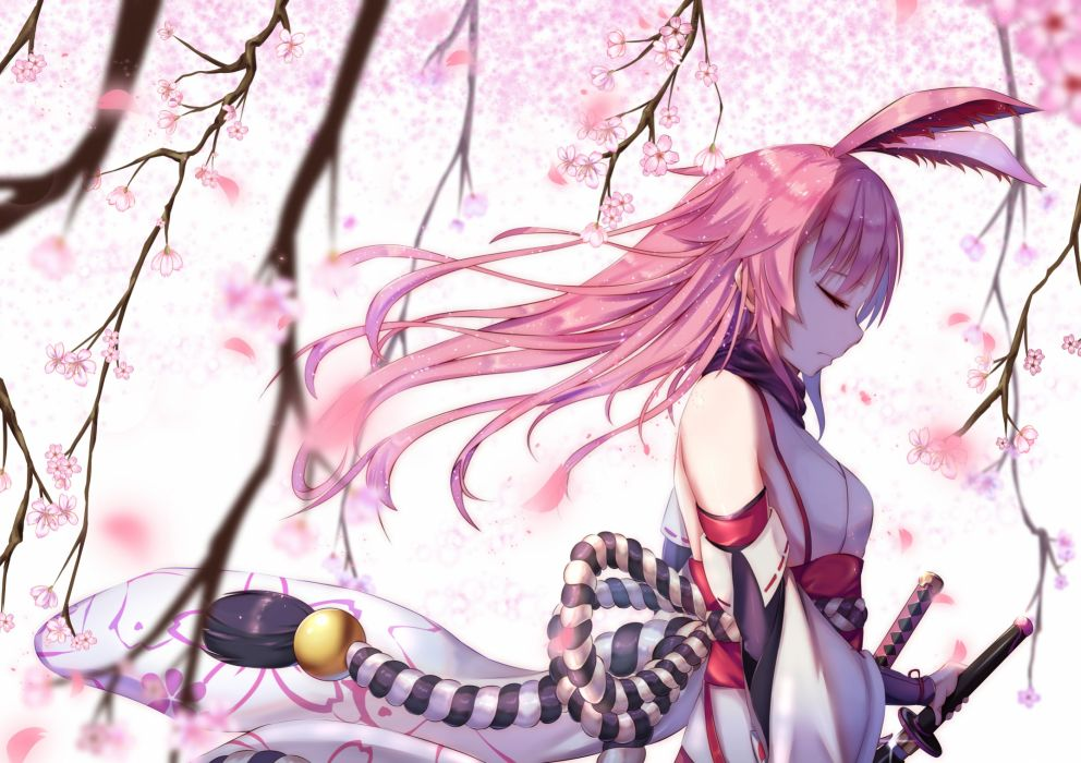 Konachan com - 248008 animal ears benghuai xueyuan cherry blossoms japanese clothes katana long hair petals pink hair sword tagme (artist) weapon wallpaper