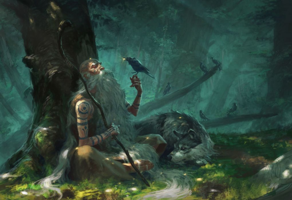 Dogs Crows Old Man Mage Staff Trees Fantasy Wallpaper 1920x1318 1126021 Wallpaperup