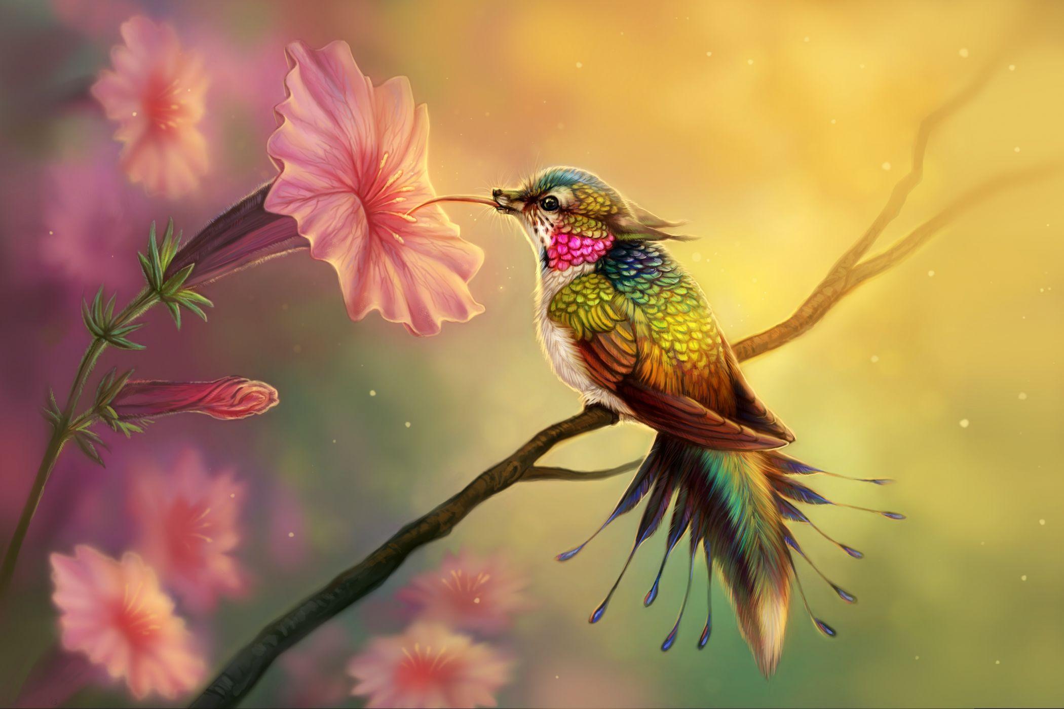 Колибри открытка, день