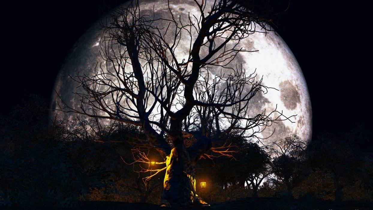 halloween bosque encantado luna llena wallpaper