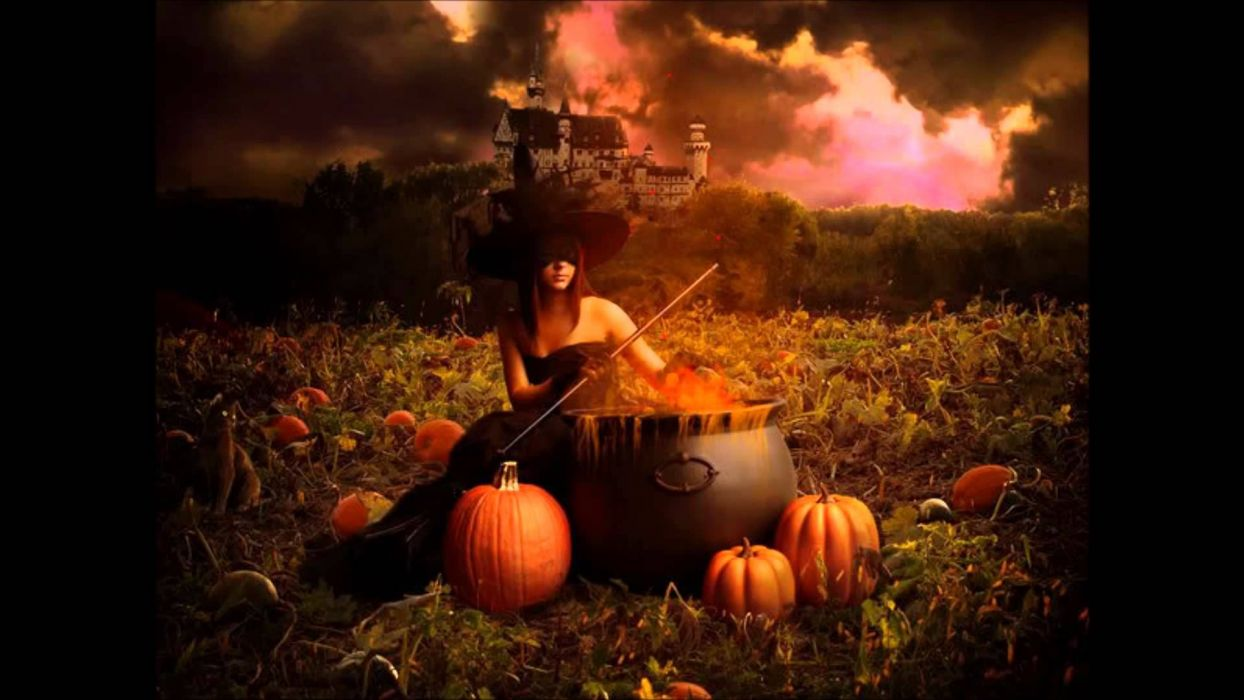bruja calabazas caldero halloween wallpaper